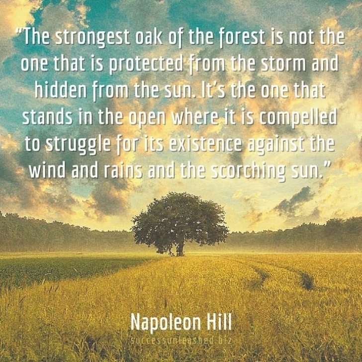 Motivational Poems About Trees And Strength Pic687