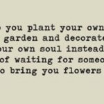 Motivational So Plant Your Own Garden And Decorate Your Soul Photo496