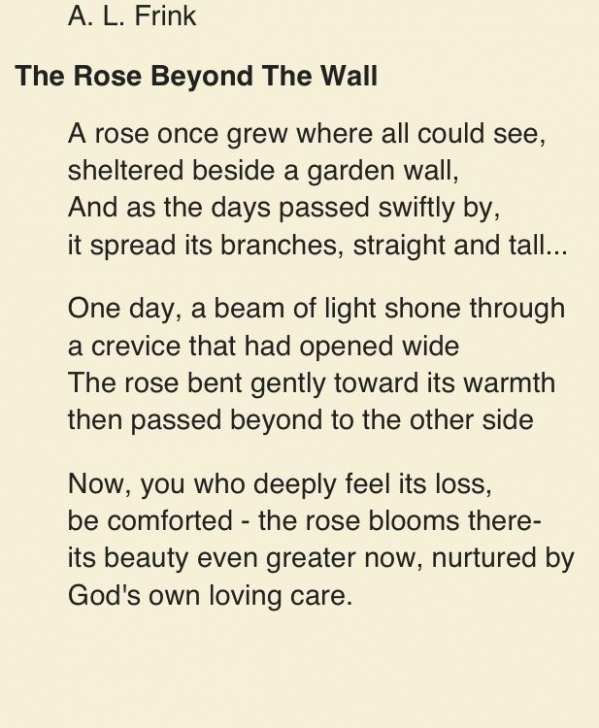Motivational The Perfect Rose Poem Image714