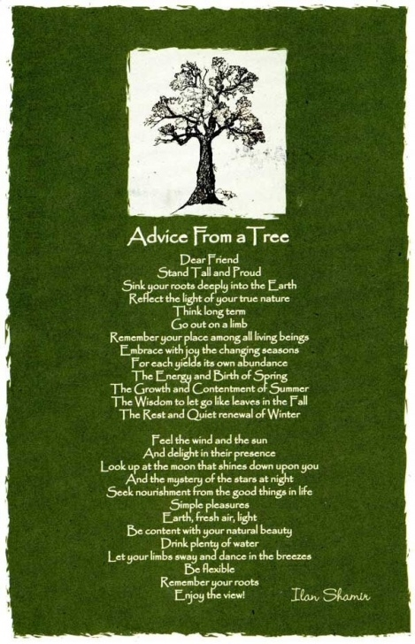 Motivational Trees Trees Trees Poem Pic784