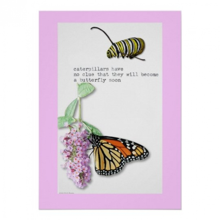 Outstanding Caterpillar Garden Poem Pics759