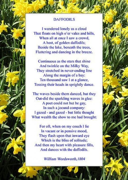 Outstanding Daffodil Flower Poem Pics892