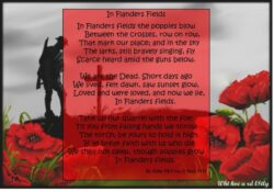 Outstanding Famous Poems About Poppies Pics660