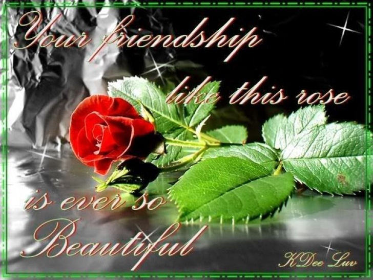 Outstanding Friendship Rose Poem Image653