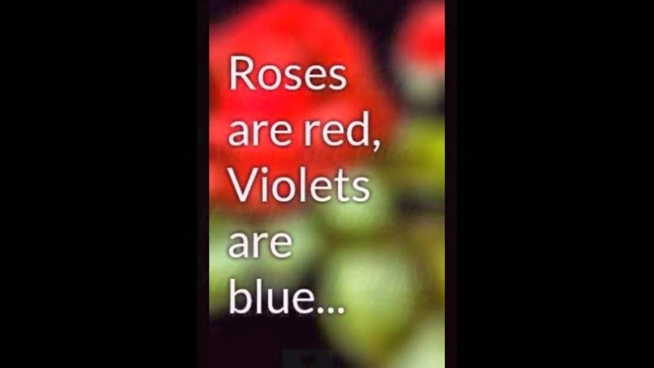Outstanding Funny Red Roses Poems Pic334
