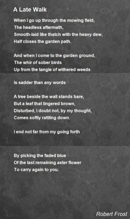 Outstanding Life Is Like A Garden Poem Picture707