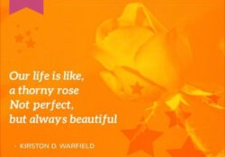Outstanding Life Is Like A Rose Poem Pics036