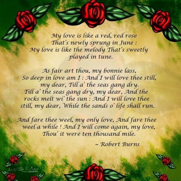 Outstanding My Love Is Like A Red Rose Poem Pics427