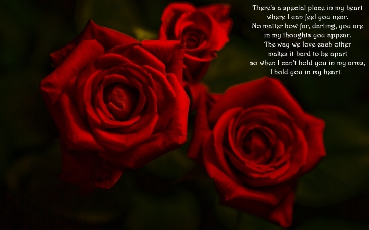 Outstanding My Love Is Like A Red Rose Poem Pics488