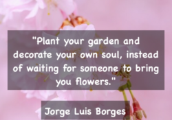Outstanding Plant Your Own Garden Poem Pic291