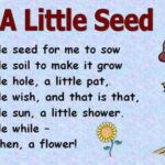 Outstanding Poem About Flowers And Life Pic964
