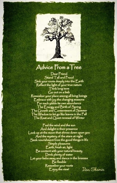 Outstanding Poems About Trees And Strength Image432
