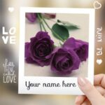Outstanding Purple Rose Poem Picture678