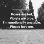 Outstanding Roses Are Red Violets Are Blue Baby Poems Photo449