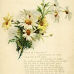 Outstanding Tiny Poems Lily Photo226