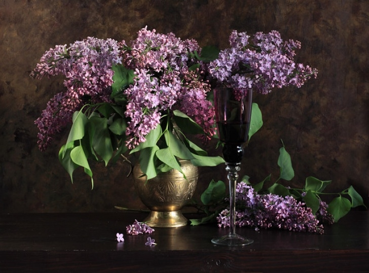 Popular Amy Lowell Lilacs Pic349