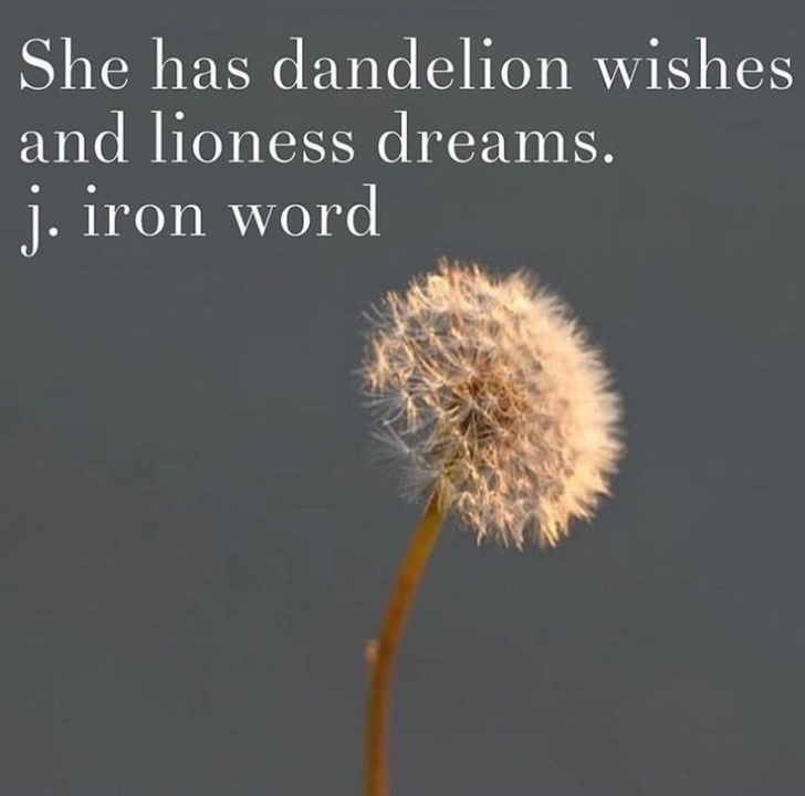 Popular Dandelion Wish Poem Pics999