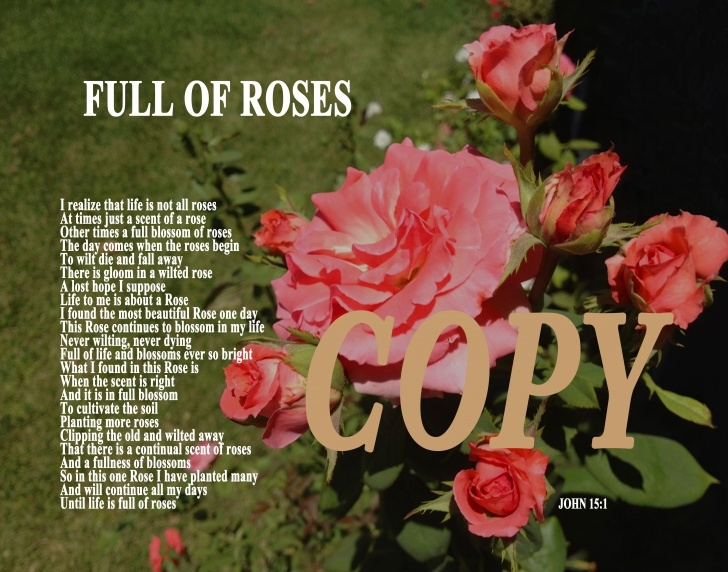 Popular Full Roses Are Red Poem Image433