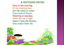 Popular Poem On Flowers For Class 2 Picture448