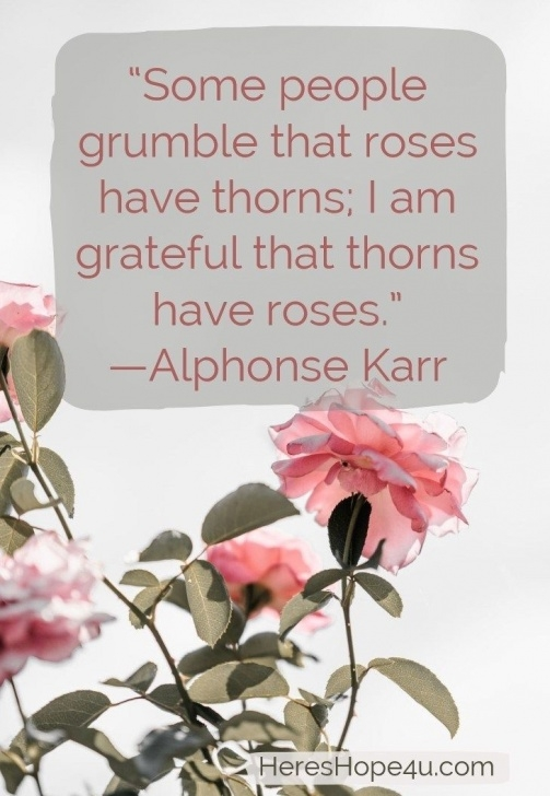 Popular Poems About Roses And Thorns Picture991
