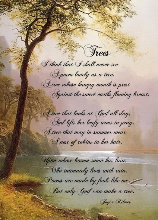 Popular Poems About Trees And Roots Picture320