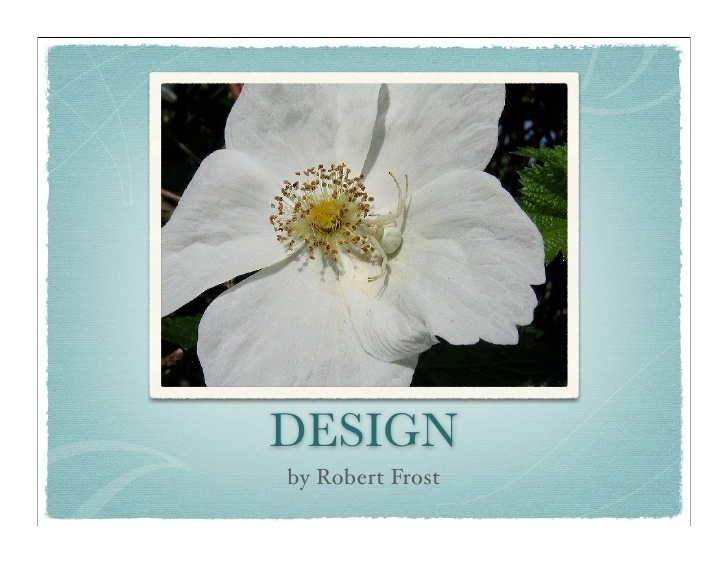 Popular Robert Frost Flower Poem Photo096