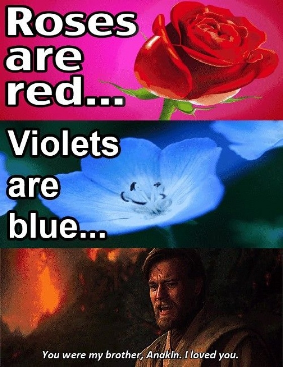 Popular Rose Is Red Violet Is Blue Pic139