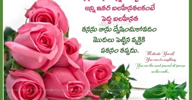 Popular Rose Poem In English Picture086