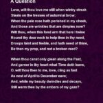 Roses In December Poem Within A Question Poem By Alfred Austin – Poem Hunter Image940