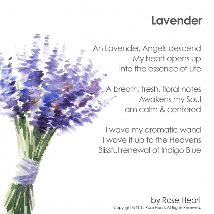 Stunning Blue Flower Poem Picture635