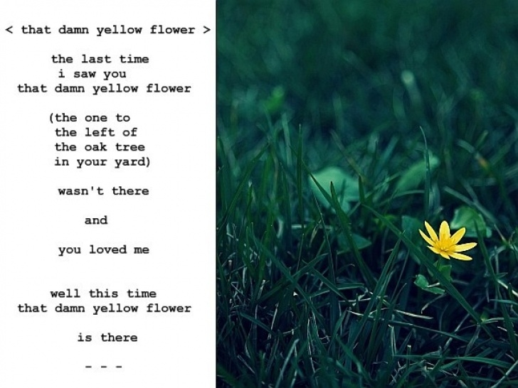 Stunning Famous Poems About Plants Picture771