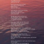 Stunning Mary Oliver Flower Poem Picture239