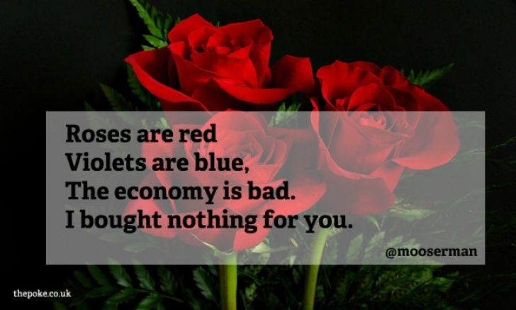 Stunning Rose Are Red Violets Are Blue Romantic Photo693