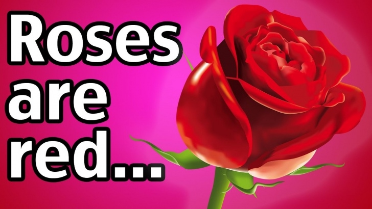 Stunning Roses Are Red Sorry Poems Picture048