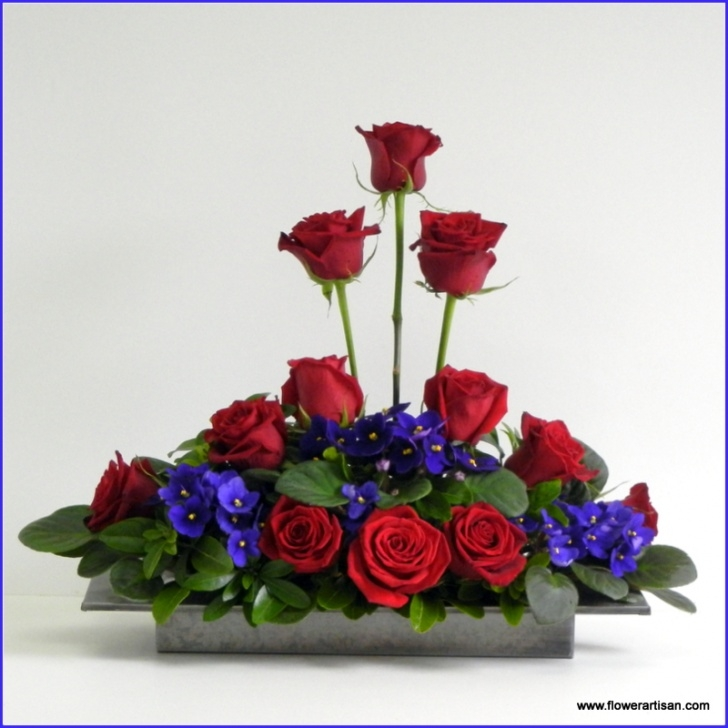 Stunning The Roses Are Red The Violets Are Blue Pics419