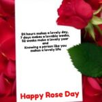Stunning White Rose Poetry Pic117