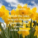 Stunning William Wordsworth Poem Daffodils Pics325
