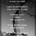 The Best Famous Poem About A Tree Picture615