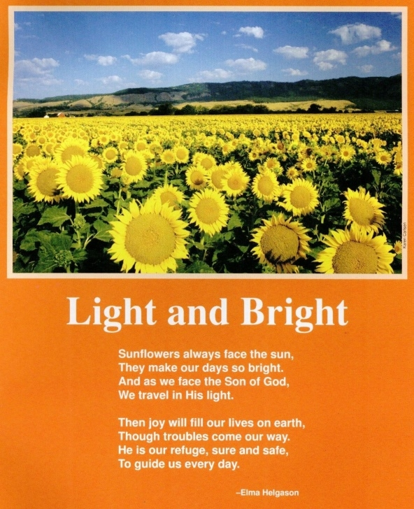 The Best Famous Poems About Flowers Pics712