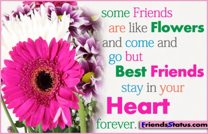 The Best Friendship Is Like A Flower Poem Pic357