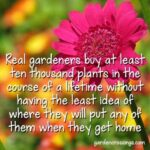 The Best Garden Poems Funny Image273