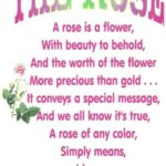 The Best Love Is Like A Rose Poem Picture221