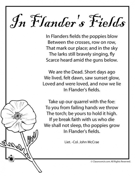 The Best Poems About Poppies And Love Pics118