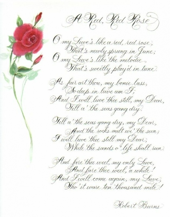 The Best Poems About Roses Photo774