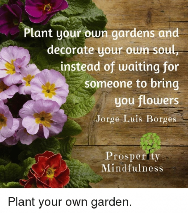 The Best So Plant Your Own Garden And Decorate Your Own Soul Pics375