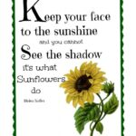 The Best The Sunflower Poem Picture196