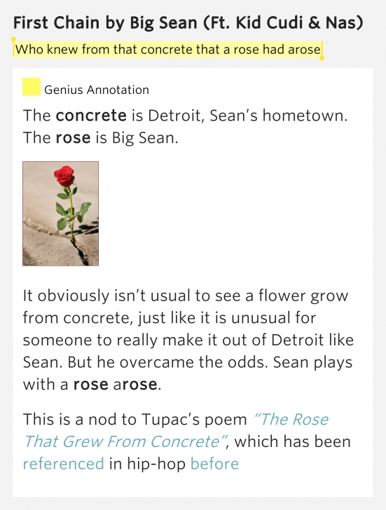The Best Tupac Flower Poem Image015