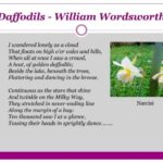 The Best Wordsworth Daffodil Poem Picture539