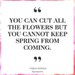 The Best You Can Cut All The Flowers Poem Pic260