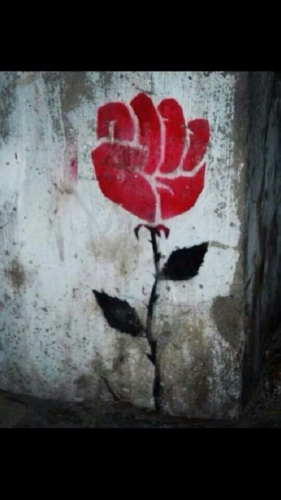 Top A Rose Growing In Concrete Pic768